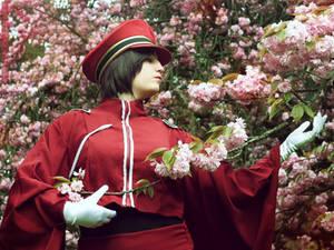 Shooting flowers