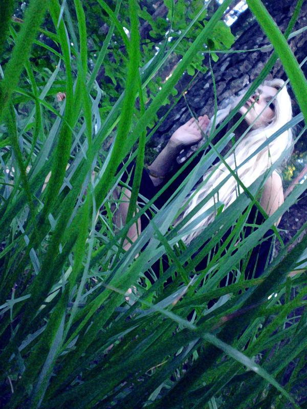 grass on by vertiginousWind