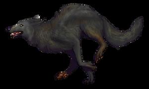 Grey Wolf by emgeal