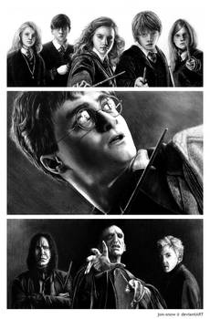 Harry Potter: Friends And Foes