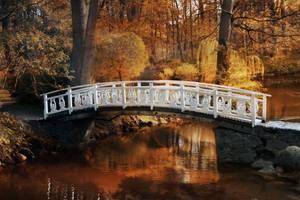 Autumn Bridge by pandorasconviction