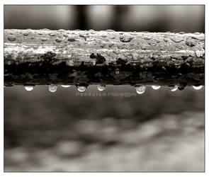 TeArS by PendulumPhotography