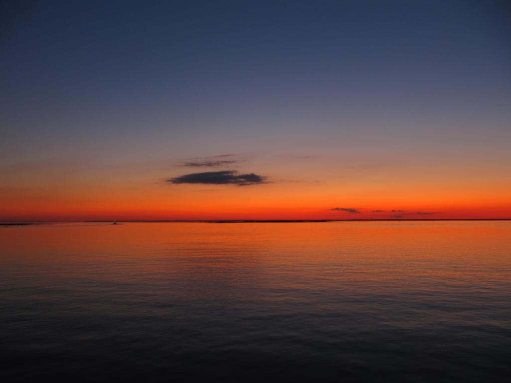 Sunset on the Horizon by xXFearFluffyXx on DeviantArt