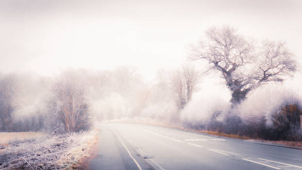 Frosty Road I