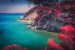 Crimson Island II