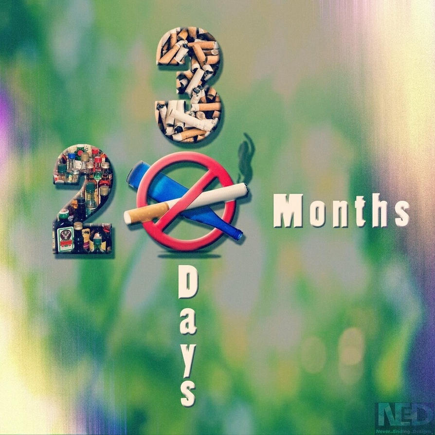 20 Months 30 days by lordtoast