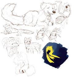 Animal Sketch Dump