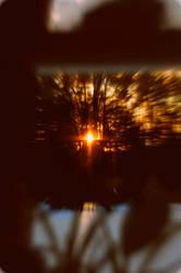 heaven in da trees by XxXEmiXxX