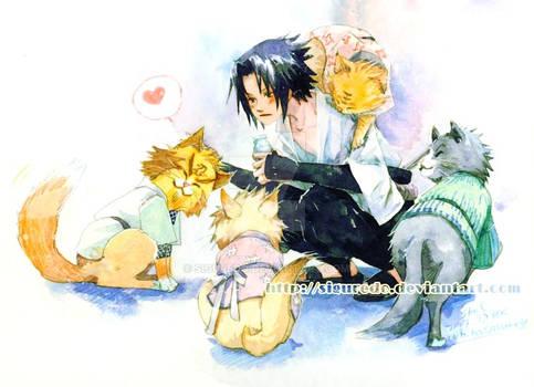 Shel - Sasuke pets
