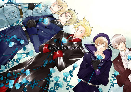 APH - Nordic countries