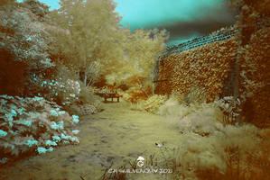 Strange-garden-by-ch-guevenoux
