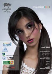 Mag Insp P10