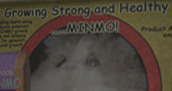 MiNMoKiTTY's Profile Picture