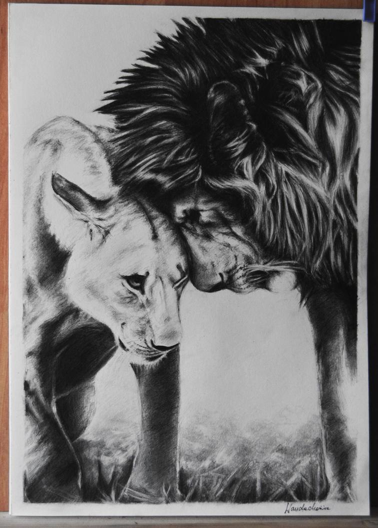 Lions by Szura69