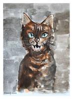 Kitty cat by Szura69
