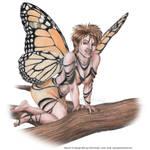 Monarch Faerie