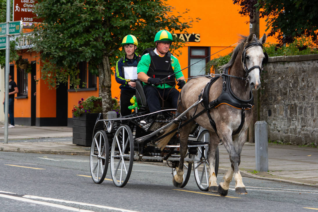 Best foot forward... the Carriage Driving Race