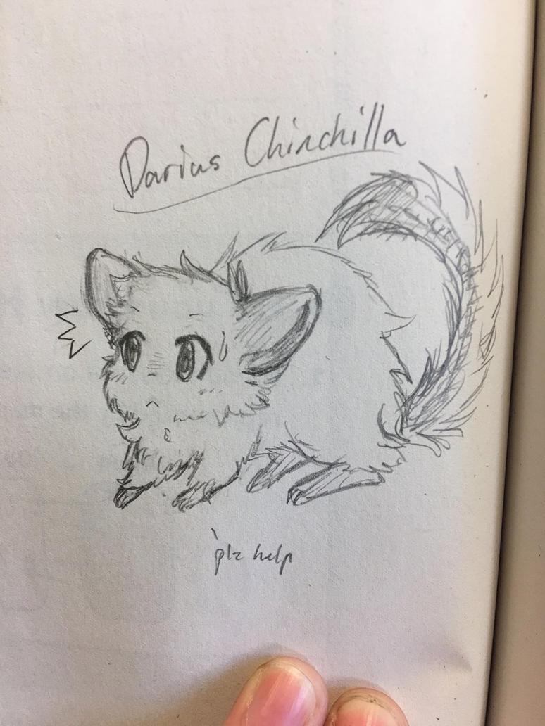 Darius Chinchilla sketch by AnimeMawwy