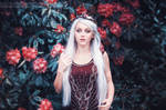 Photo Edit - Red Princess