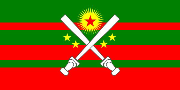 alt flag republic - photo #16