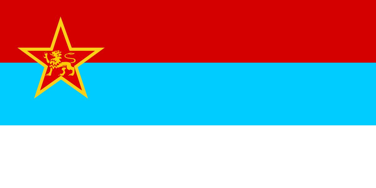 alt flag republic - photo #2