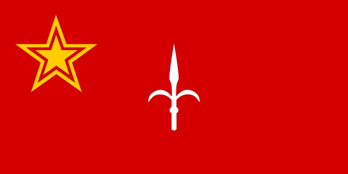 alt flag republic - photo #18