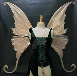 Titania Grand Wings, front