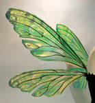 Teasel Painted Wings Absinthe3