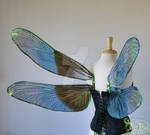 Iridescent Dragonfly Wings for Sebastian, view 2
