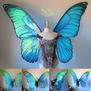 Giant Blue Morpho Iridescent Fairy Butterfly Wings