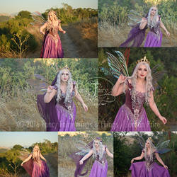 Thistle Fairy Queen Stock Photos (Aynia Wings)