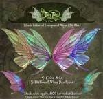 Fancy Fairy Titania Stock Fairy Wings PNGs
