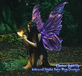 Clarion Light Up Fairy Wing Overlays!