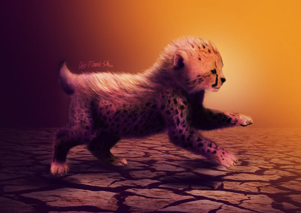 + Cheetah Sunrise + by LimskArt