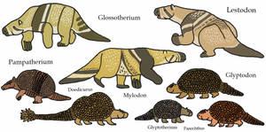 Collection of Pleistocene Xenarthans