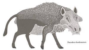 Digital Menagerie: Daeodon shoshonensis
