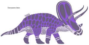 Digital Menagerie ll: Torosaurus latus