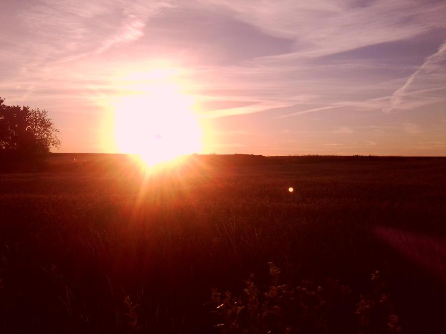 Sonnenuntergang by Narsota
