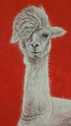 Gustavo the Llama by AwkwardnessAnonymous