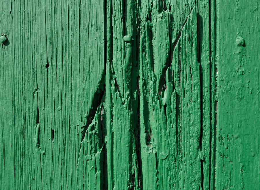 green painted wall by janhatesmarcia