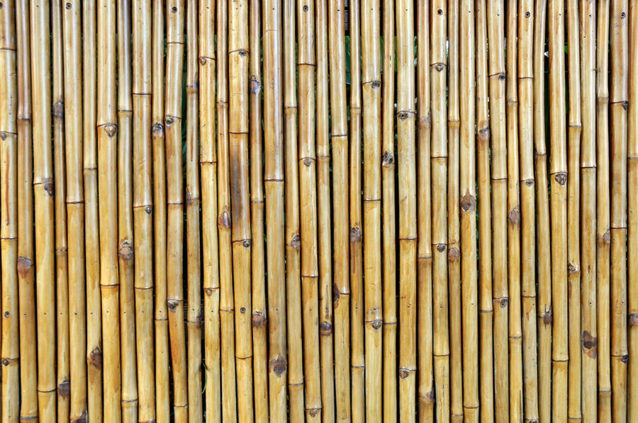 bamboo fence texture by janhatesmarcia