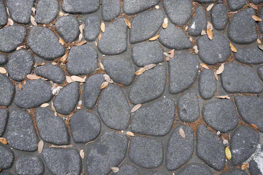 cobblestones by janhatesmarcia