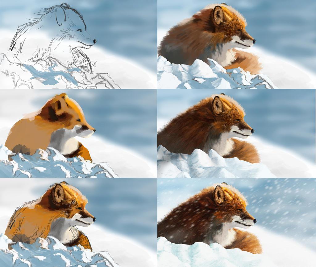 Fox painting steps by onionrider