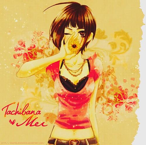 Hiyokoi Wallpaper Mei - Sukitte Ii Na Yo...