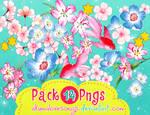 Pack 14 pngs