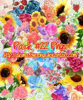 Pack 22 pngs