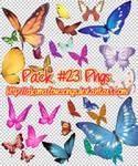 Pack 23 pngs