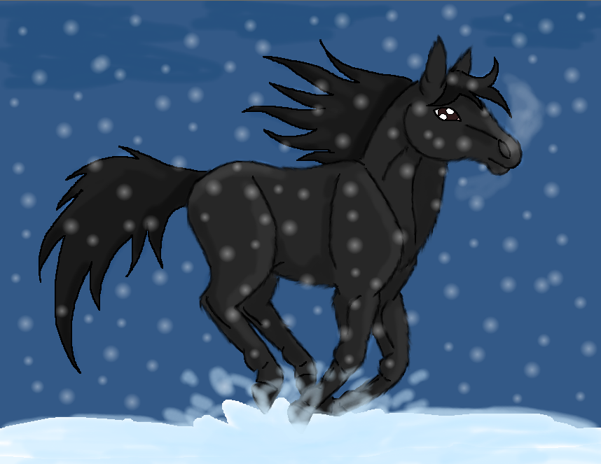Black horse snow by Spinokki on DeviantArt