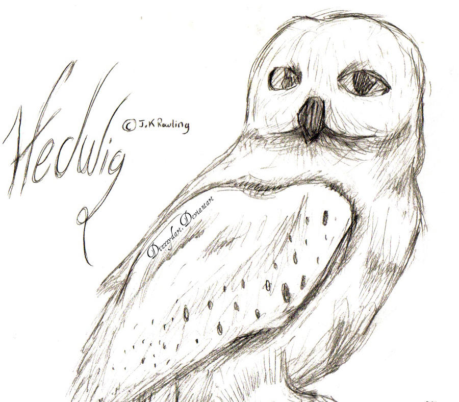 Hedwig By DizzzyDart On DeviantArt