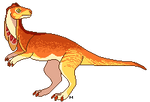Kausse Dino Doodle